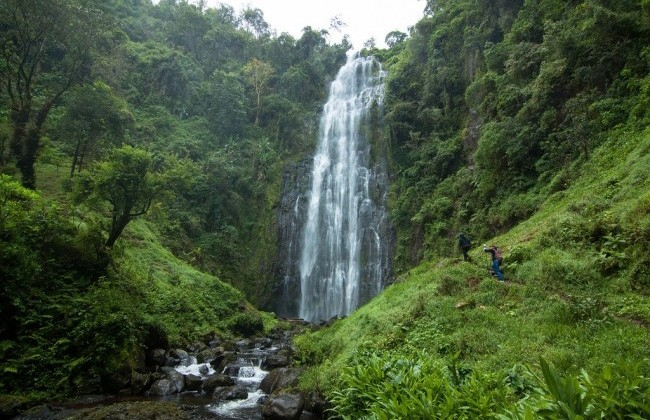 Materuni Village and Waterfall Tour