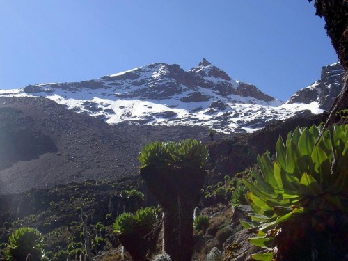 Climbing Mount Kenya 4 days trek