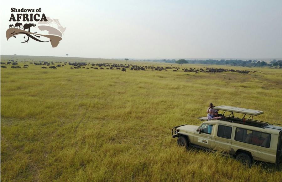 Game drive safari