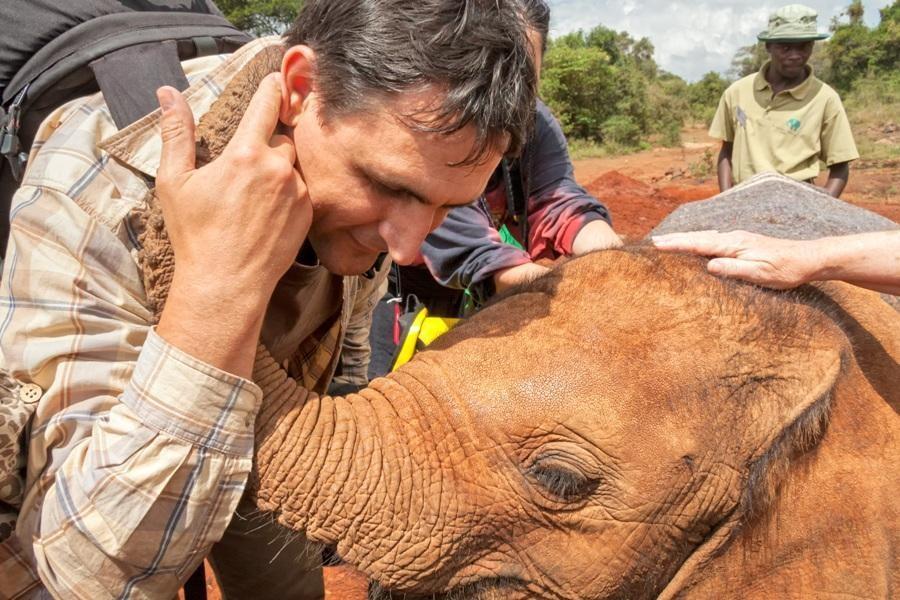 Slonja sirotišnica -The David Sheldrick Wildlife Trust