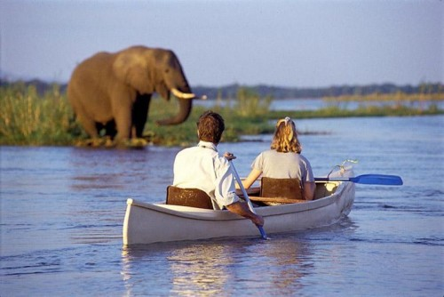 Canoe safari IN AFRICA