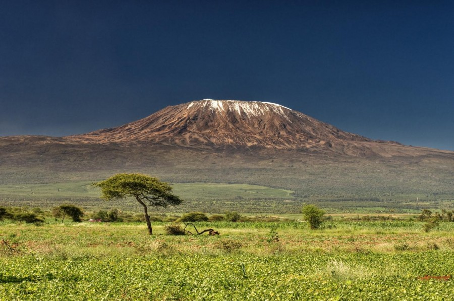 Northern Circuit - Climb Kilimanjaro - 9 days