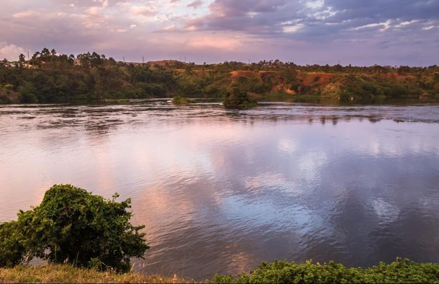 Lake Bisina