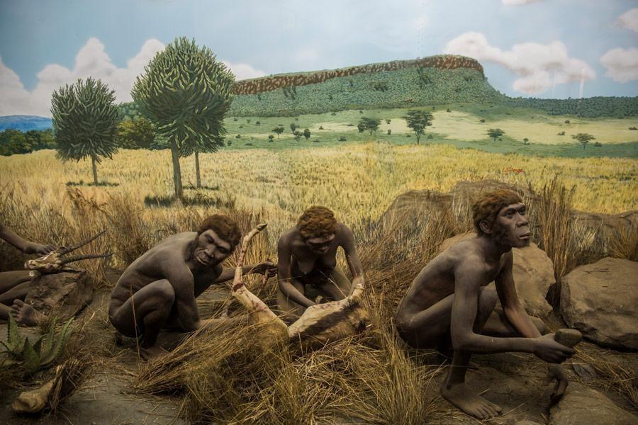 Nairobi National Museum