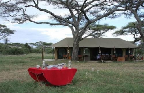 Lemala Ndutu -safari to africa accommodation