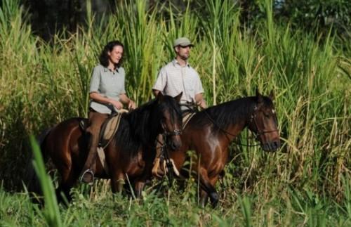 Makoa Farm Tour