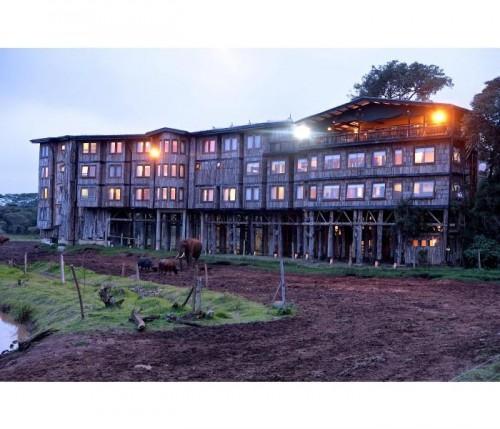 Treetops Hotel