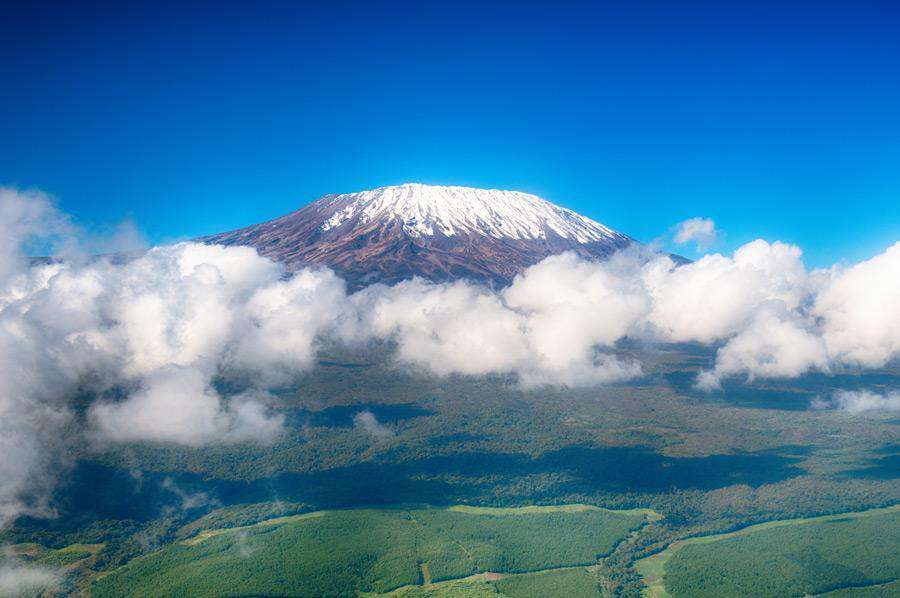 Mount Kilimanjaro One Day Hike